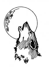 howlin4.jpg