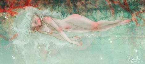illustration : NEPHYLA