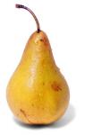 pov'pomme