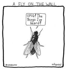 The fly on the wall...