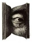 l'oeil était dans le livre