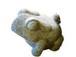 grenouille_granit.jpg