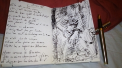poésie,photographie,gaëna da sylva,confessions du fauteuil vert,green armchair,eirin,acrostiche